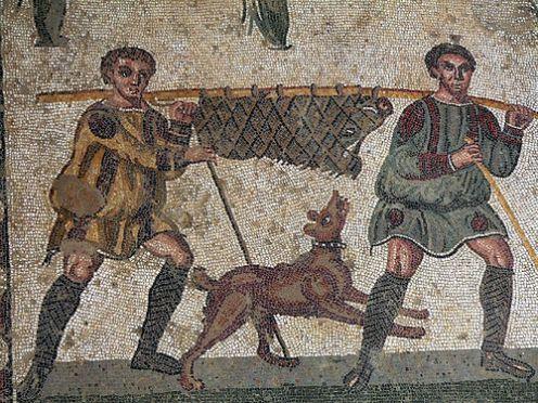 history dog