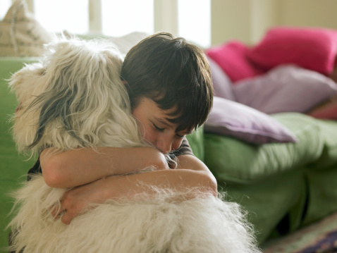 Do you know how much you really love dogs?